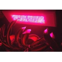 LED调光植物灯