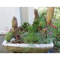 园林绿化设计选择昆山弘坤艺术景观
