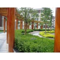 廊架1|陕西西安艺博园林景观