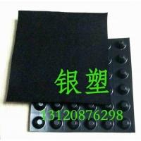 排水板_蓄排水板_HDPE防排水板_塑料排水板_绿化排水板价