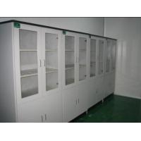 实验室药品柜 实验室器皿柜 PP试济柜 全钢器瓶柜