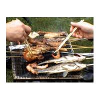 烧烤网,烤肉网,野餐网