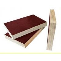 广西建筑模板生产-桂林辉煌建筑模板厂-全国招商