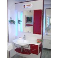 上海银基洁具-金海思卫浴-烤漆浴柜
