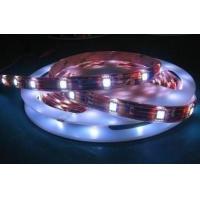 供应LED灯条、贴片灯条、LED软灯条5050,3528