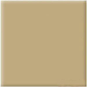 欧鹏/以上是四川瓷砖,欧鹏各色系各尺寸外墙砖批发销售的详细介绍,...