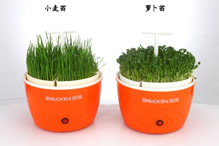 贝欣智能芽菜机 家用豆芽机