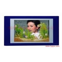供应浮阳免换水鱼缸 壁挂鱼缸 生态壁挂鱼缸 水族壁画 生态水
