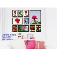 厂家批发10框组合加厚实木相框照片墙,颜色可选