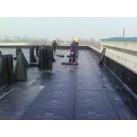福州房屋防水