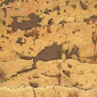 耐适佳—软木墙板系列—褐色嘉海