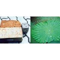 天宫(TG) 国际新型永久防水剂