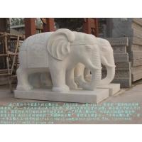 石雕象汉白玉石象,石雕大象,盛世有象等各种石雕大象