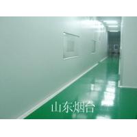 山东 烟台 威海环氧砂浆地坪涂装系列