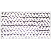 不锈钢金属输送带网