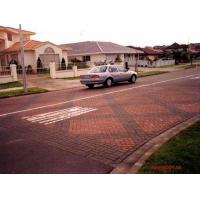 荷兰砖 空心砖  各种广场砖 护坡坂块等等