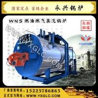 燃油锅炉燃气锅炉