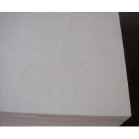 白面杂木芯胶合板