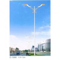 南京工程照明-盛景华成工程照明-路灯-30