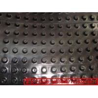 厂家直销塑料排水板/排疏板/建筑夹层板