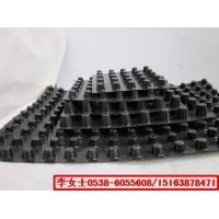 塑料排水板,山东生产厂家批发