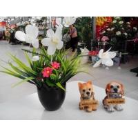 北京仿真花卉