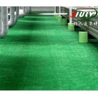 九绿屋顶草坪人工草坪人工草皮展览草坪院艺绿化