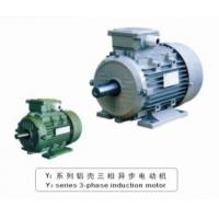 佛山市电动机工厂生产Y2系列铝壳三相异步电动机