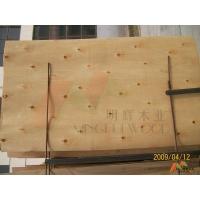 供应广东特级桉木单板