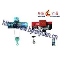 钢丝绳电动葫芦/微型电动葫芦