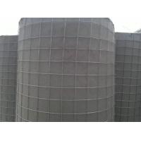 滨海区镀锌焊接钢丝网|墙面防裂电焊网|热镀锌铁丝网