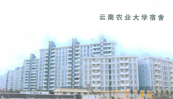 云南农业大学宿舍图片