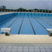 佛山建球陶瓷,专业泳池砖