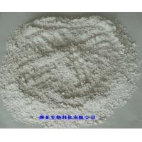 陶瓷级正磷酸铁