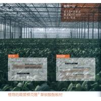 南京阳光板-拜耳阳光板南京总代理-聚碳酸酯板材