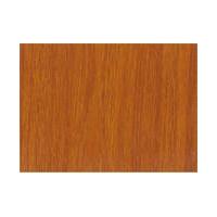 亚克西艾佳防水防潮防霉塑胶地板革PVC地板片材卷材地板胶