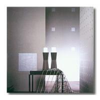 圣象壁纸-加强丝绒纤维和纯金属色料壁纸-壁纸