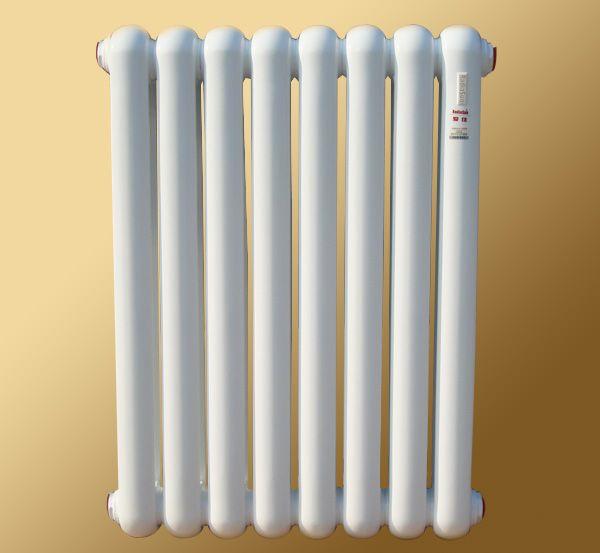 供应爱佳家用钢制柱式散热器 暖气片