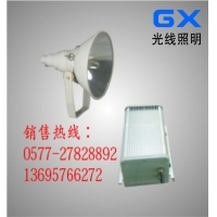 CNT9150A防震投光灯,防水防尘防震投光灯,高亮度投光灯