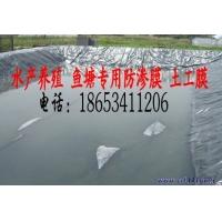 鱼池土工膜价格 吉林鱼池土工膜厂家