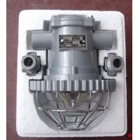 DGS18、12、10/127L(A)矿用隔爆型LED巷道灯