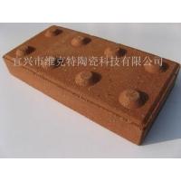 竖条盲道砖、波点盲道砖、陶土砖、烧结砖