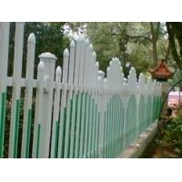 供应大洲pvc护栏
