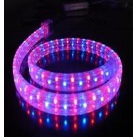 LED灯带LED彩虹管