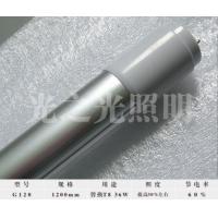 管中管节能灯1200mm(玻璃型)
