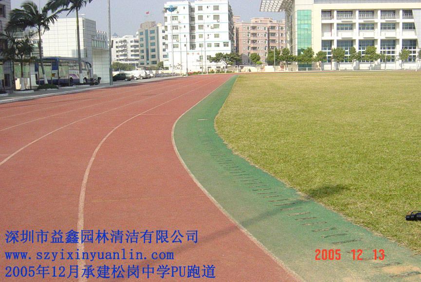 运动场工程塑胶跑道