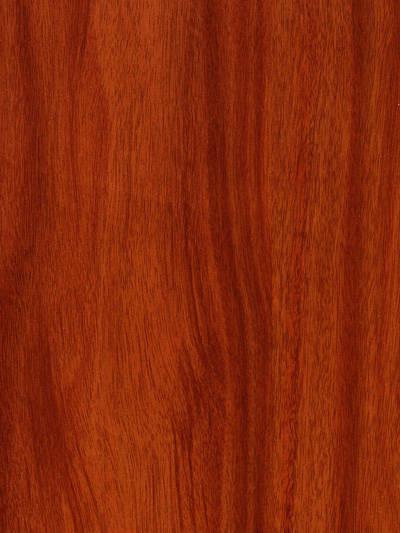 柏顿地板-柏顿名仕系列-虎斑木