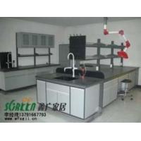 潍坊实验室家具|潍坊天平台高温台|潍坊通风橱0131