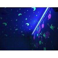 水性夜光漆